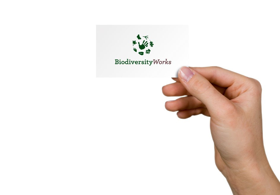 Biodiversity-Works-Non-Profit-Conservation-Agency-Logo-Branding-Identity-Business-Card-Stationery