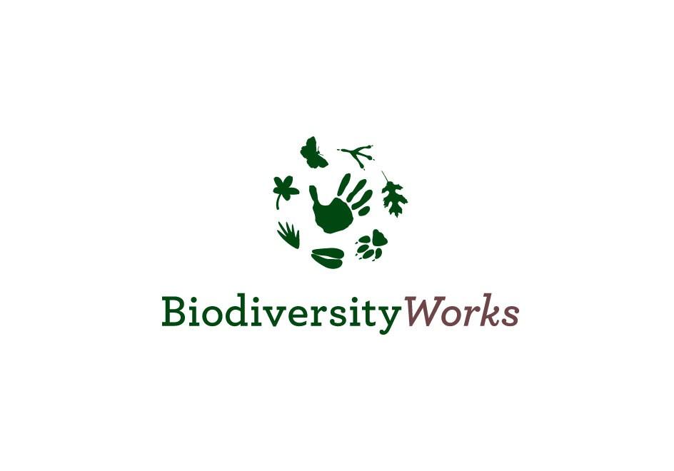Biodiversity-Works-Non-Profit-Conservation-Agency-Logo-Branding-Identity-Logo-Color